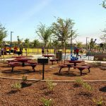 Surprise Farms Park picnic area and BBQ grills